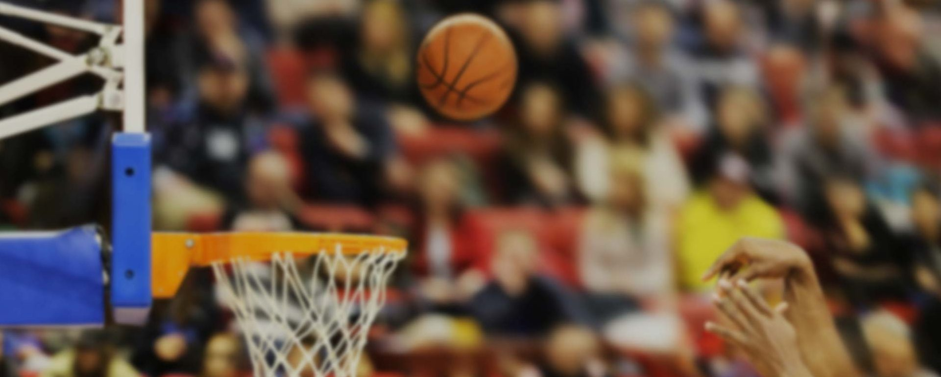 dunav-basket-parallax-bb